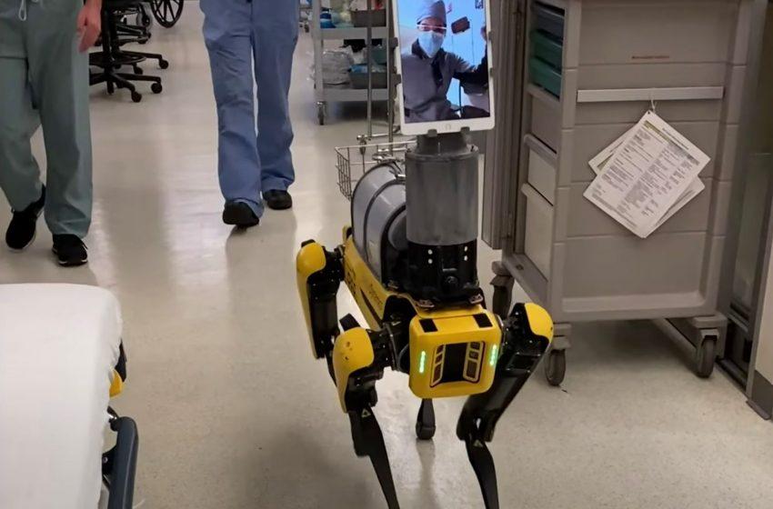 محافظت ربات Spot از کادر درمانی در برابر ویورس کرونا